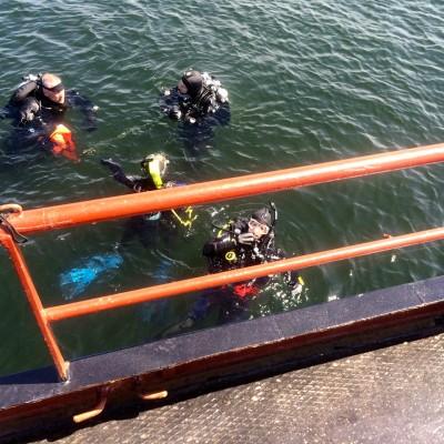 4 duikers van Qdiving