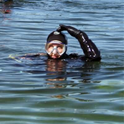 duiker in het water geeft ok-teken