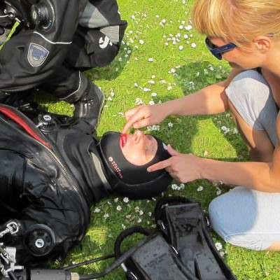 duiker gewond op de grond
